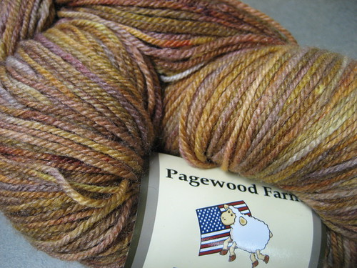 Gorgeous hand-dyed yarn in Autumn Colors by you.
