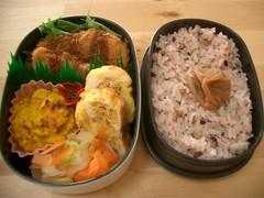(skamegu) Tags: food rice bento japanesefood     bentos