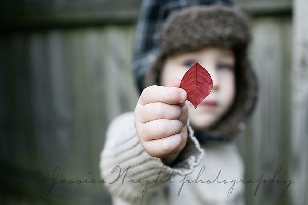 Red leaf for mommy