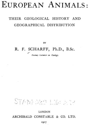 Scharff