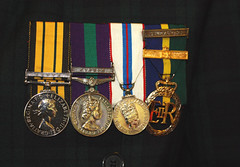 The medals awarded to Rolland Rose (Shandchem) Tags: africa black rose silver general jubilee watch decoration medal queen service clasp harris remembrance academy 2008 soe rolland territorial takeabow kenja shieldofexcellence