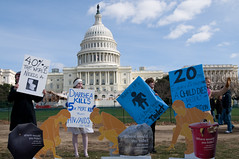 2008年世界廁所日街頭行動。照片來源:世界廁所組織