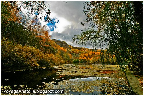 Autumn at Lake Karagöl by voyageAnatolia.blogspot.com.