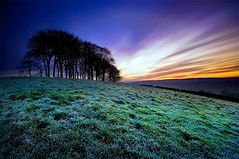 Obsessive Megalomaniac (jasontheaker) Tags: trees winter sunset west fog frost yorkshire ilkley otley landscapephotography chevin menston jasontheaker tenstop