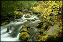 COLD SPRINGS CREEK (Cliff Zener) Tags: mt hood creeks zener oregoncreeksandrivers columbiagorgecreeksandrivers riverscliff