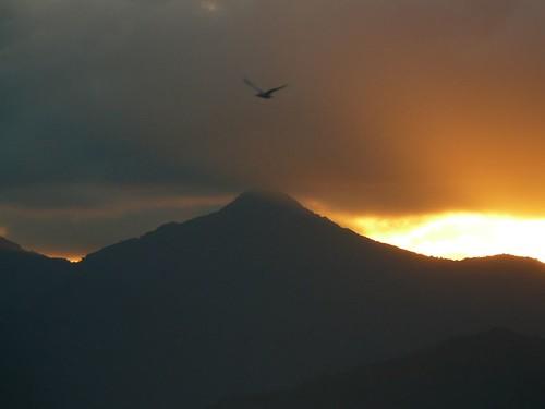 Week End Ilot Sapin Touho #18 : coucher de soleil #14