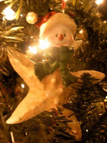 Snowy Starfish