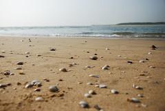 Cuddalore - Silver beach