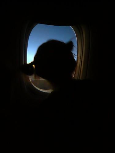 Lisa ventana