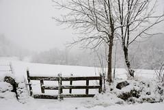 LozereNeige (RS...) Tags: winter snow nikon hiver neige d200 lozere 3556 18200f3556