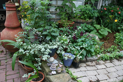 zen gardening 107