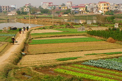 Vietnam Countryside (Life in AsiaNZ) Tags: road people vegetables rural canon countryside town g farming powershot vietnam series g9 gseries canong9 lifeinnanning flickrgiants
