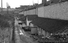 Colliery housing, Somerset. (Fray Bentos) Tags: somerset radstock coalmining terracedhouses somersetcoalfield minershouses