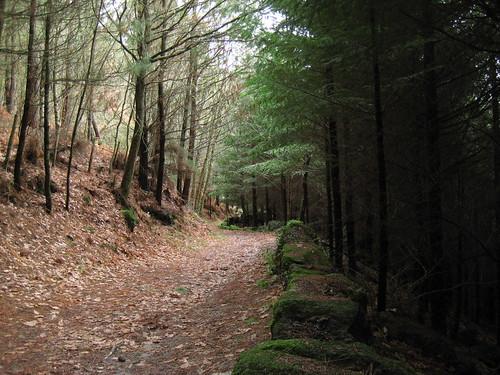 Ruta de San Pedro de Rocas
