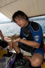 DSC_3975 (LB4 Photography) Tags: nikon sancarlos privateisland pantalan sipaway kamikazedivers sipawaydivers bacolodbeachresort divingexpedition campalabo