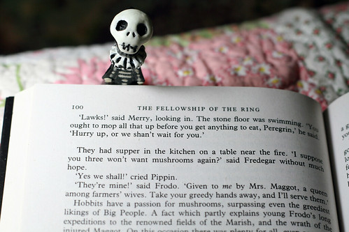 Skelly is reading LOTR