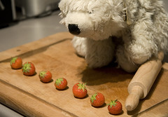 Day 224 - Strawberry Jam (The Fox and the Polar Bear) Tags: strawberries polarbear talent fox rollingpin day224 strawberryjam battlecry project365 365days mrfox toyproject mrspb splatting precisionsplattingpractice