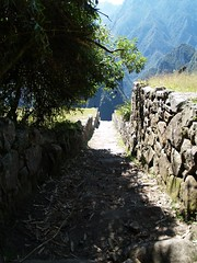 Trail to Machu Picchu peak