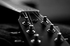Guitar-5855