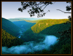 West Rim of the Pennsylvania Grand Canyon at Sunrise (pinecreekartist) Tags: pennsylvania pa wellsboro chiaramonte pennsylvaniagrandcanyon wellsboropa onlythebestare pinecreekartist tiogacountypachiaramonte
