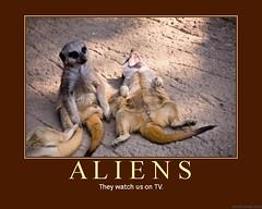 d aliens 2 (dmixo6) Tags: television tv funny motivator action surveillance alien humour ufo aliens despair motivation parody laughter flyingsaucer demotivator j1 humans greys martians demotivation behaviour dmixo6