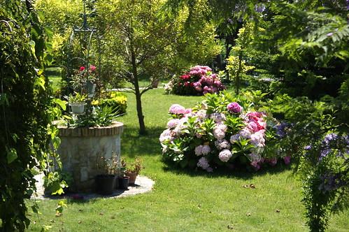Lovely Yard