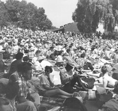 This crowd of folks was in Mount Baker watching the Seafair hydroplane races in 1965. Plan to do the same this year? Light rail can get you there. Photo courtesy of Seattle Municipal Archives.