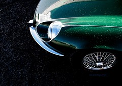 truly british design icon (essichgurgn) Tags: auto car race automobile voiture racing coche e type carro jaguar macchina racer xke oto automvil karu motorcar lightweight cotxe  kocsi     samochd  vehculo otomobil   automobiel   vettura   bl avtomobil makin   karru mba          awto oyto