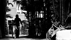 into the shade (danny st.) Tags: street photography nikon singapore candid d300 emeraldhill