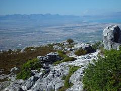 "Top of ""Tabletop"" 4 (TontonJon) Tags: africa urban mountain mountains nature landscape southafrica landscapes capetown panoramic coastal sprawl geologic tabletopmountain"