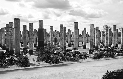 Field of Columns