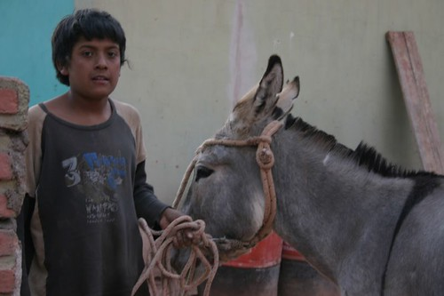 Boy + donkey. Pituil - Argentina.