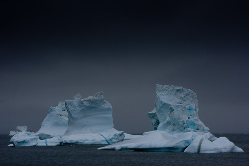 First icebergs