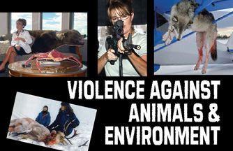 Kinship Circle - 2008-09-27 - Palin's Pro-Death Platform - Violence