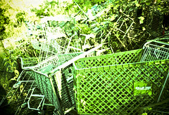 where trollies go to die (slithy-toves) Tags: newyork green abandoned film trash site xpro crossprocessed garbage woods dump ithaca olympusxa2 velvia50 shoppingtrollies