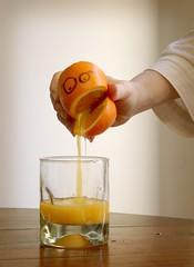 95 • 365 :: Life is like an orange...