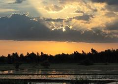 Sunset at Chengalpet (senthilvasanm) Tags: india tamilnadu chengalpet