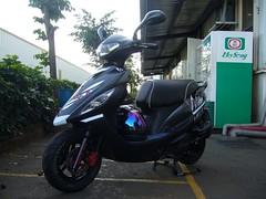 New Style 2008/11/29 E