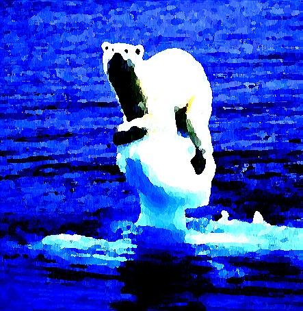 Polar Plight