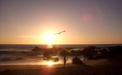 Ocaso (Feskyblue) Tags: sol atardecer mar playa nia cielo ocaso rocas