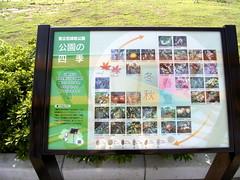 東立石公園、四季なハイテク1。