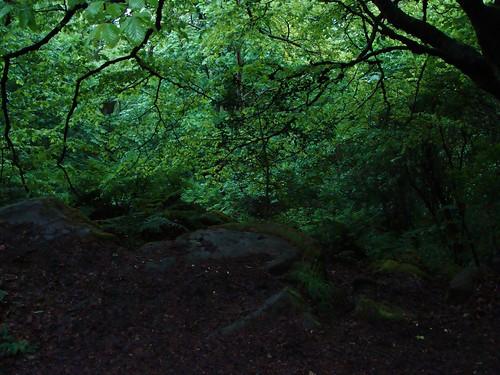 Dalkey Hill Rainy 039