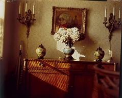 wallpaper stilllife film painting stillleben slide diningroom bodegón vase venetianblinds 4x5 sconce e6 largeformat credenza eureka vacuumcleaner graflex naturemorte speedgraphic damask fujiastia100 naturamorta miseenabyme pacemaker graphex натюрморт asetelma optar135mmf47 静物画 grosformatkamera 정물화 большойформат stilllifewithinastilllife