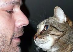 Me 'n Lola (St-Even) Tags: pet pets toronto nature animals cat feline lola urbannature silvertabby