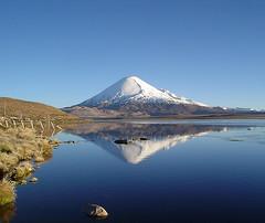 Lago Chungar y Volcn Parinacota (ik_kil) Tags: chile lake volcano altiplano parquenacional lauca lagochungara cordilleradelosandes volcanparinacota mygearandmepremium mygearandmebronze mygearandmesilver mygearandmegold