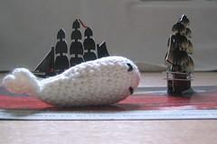 White whale 3