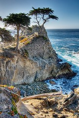 Lone Cypress Tree (Eric Wolfe) Tags: ocean california usa tree landscape coast solitude unitedstates scenic bigsur cliffs pebblebeach lone 17miledrive cypress viewpoint hdr lonecypresstree original:filename=200712300001jpg