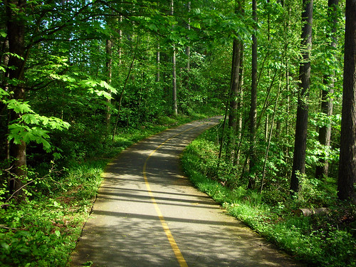 4-Shoreline Interurban Trail