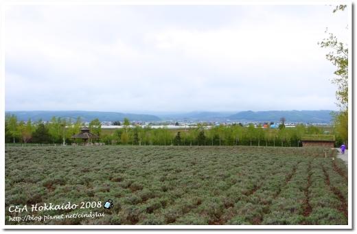 Hokkaido_0514