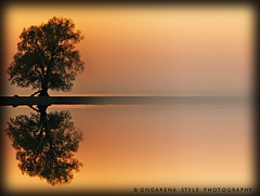Sunset Reflections (G.Hotz Photography (busy as a bee =)) Tags: portrait people food lake photography dornbirn feldkirch sterreich stillleben foto fotograf fotografie hard bregenz gerald photograph bodensee soe constance breathtaking bludenz blackpearl oesterreich vorarlberg produkt hotz hochzeitsfotograf mywinners abigfave topofthefog aplusphoto diamondclassphotographer flickrdiamond platinumheartaward elitephotography betterthangood ondarena fotolyst breathtakinggoldaward